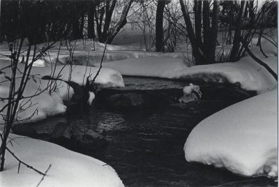 Snow&Stream